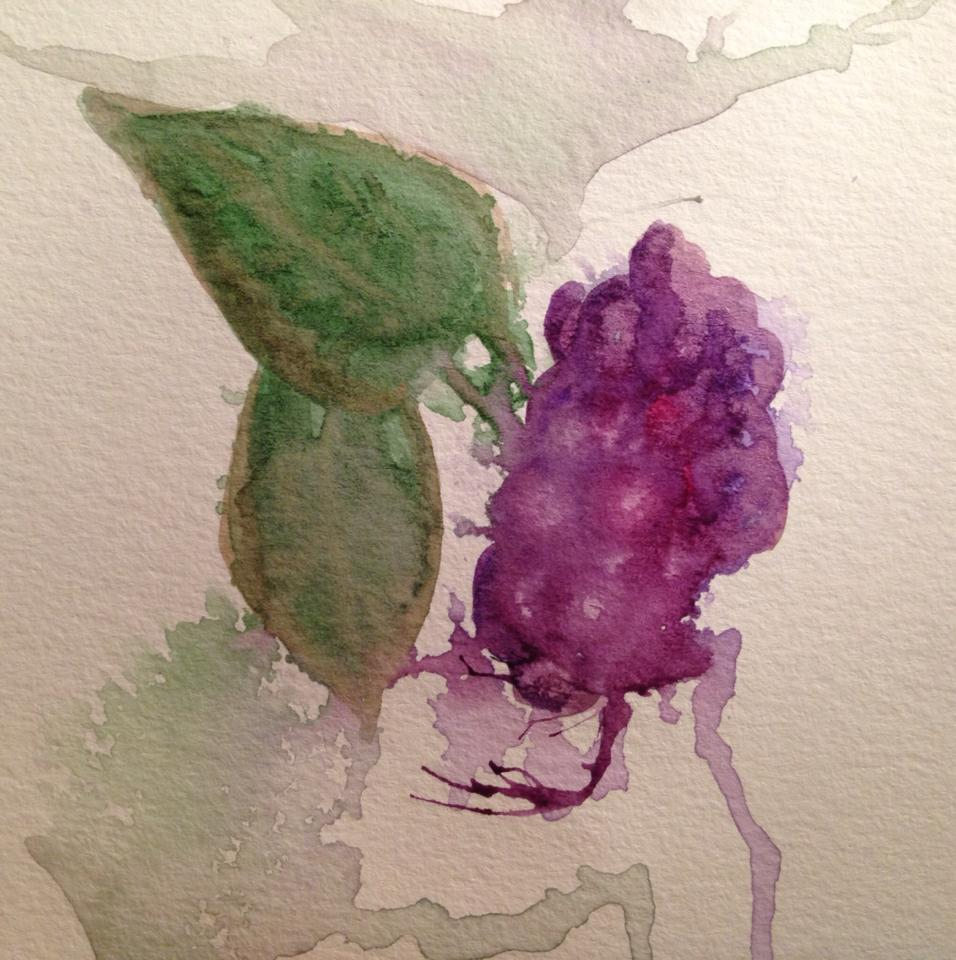 Day 164: Grapes and Leaves in Watercolor on Watercolor Paper